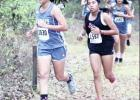 Freshman Toscano leads Ladycats to regional qualification
